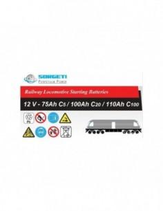 Baterie tractiune ZAP tip LE (pentru locomotive) - Sorgeti.ro